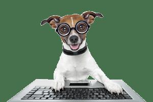 Coder-Dog
